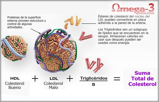 cuales alimentos causan acido urico alimentos que aumentan acido urico que alimentos no comer cuando tienes acido urico